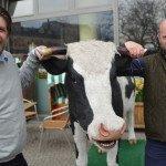 Oprichters 'Koop een Koe' willen Duitse markt veroveren