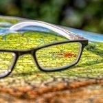 Nederlandse ondernemers delen hun grootste cultuurshock over zakendoen in Duitsland