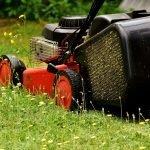 Waarom je in Duitsland vandaag maar beter niet kunt grasmaaien